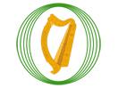 Dáil Éireann live