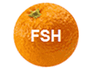 Watch FSH live