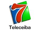 Watch Teleceiba live