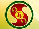 STVS live
