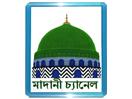 Watch Madani Channel Bangla live