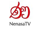 Nenasa TV Grade 10 live