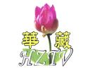 Watch Hwazan Satellite TV live