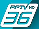 PPTV HD 36 live